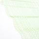Quaestio II b grön