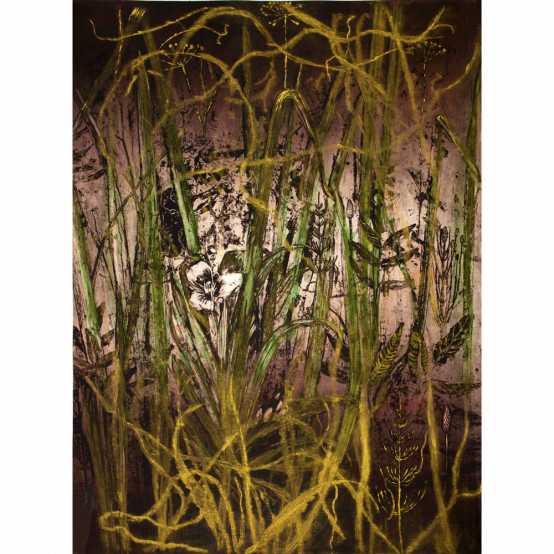 Plant Agua