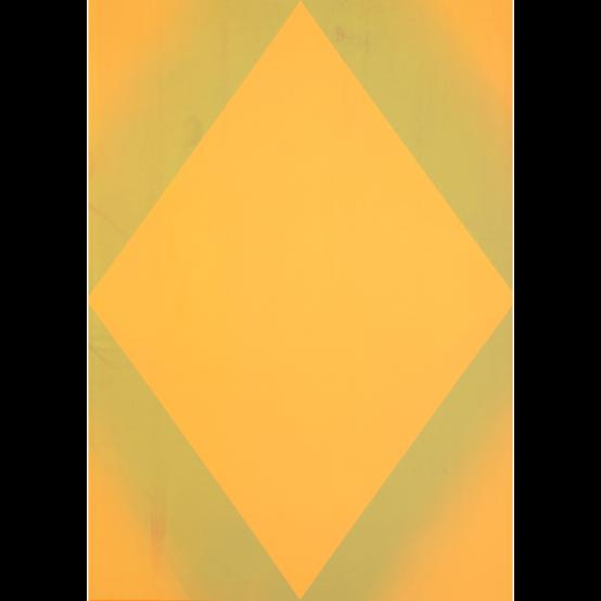 W.O.P 239