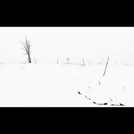 Vinterdike