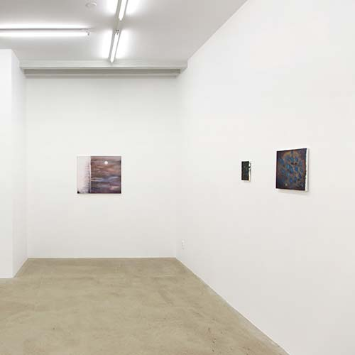 View of the installation at solo exhibition 2014 at Galleri Thomas Wallner. Photo by Lucas Gölén.